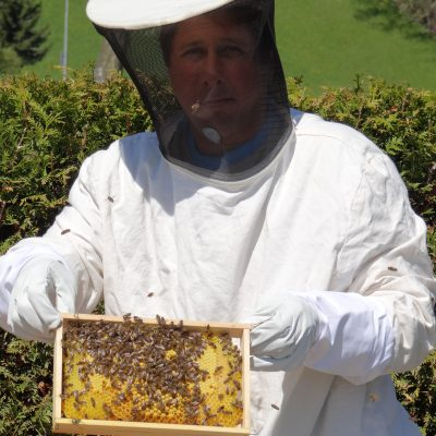 Bienenwabe mit Drohnenbrut Imkerei-bachmann.ch