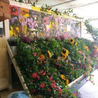 Bienenwagen für die Sennenchilbi Feusisberg