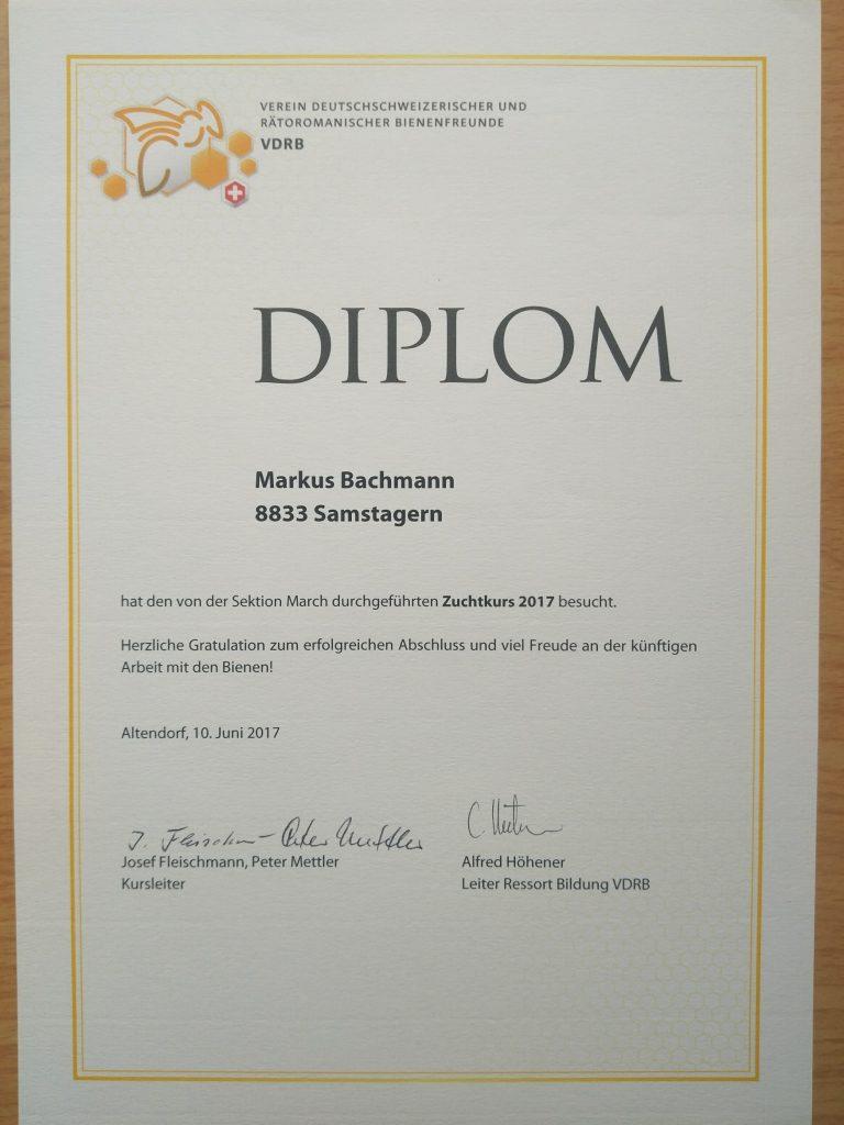 Königinnen Zuchtkurs Imkerei- Bachmann.ch